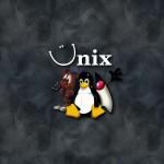 компилятор gсс, POSIX, linux, unix